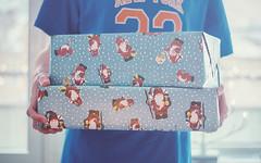 Day 359/365: Christmas Eve (jennydasdesign) Tags: santa christmas 50mm dof bokeh grain 365 2012 project365 julklappar 365days dt50mmf18sam sonyslta57
