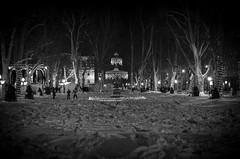Zrinjevac, Zagreb (monotag) Tags: winter blackandwhite bw advent croatia christmaslights zagreb zrinjevac cityofzagreb d7000 afsnikkor35mm