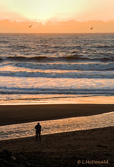 Photographer at Sunset (LindaMcD1) Tags: centralcoast moonstonebeach susnet