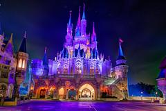 The Backside of a Castle (TheTimeTheSpace) Tags: light castle fountain night stars warm glow purple disney disneyworld wdw waltdisneyworld hdr magickingdom cinderellascastle matthewcooper photomatix nikond800 thetimethespace