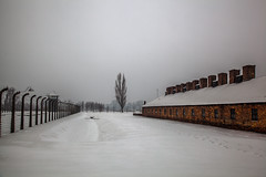 Auschwitz (Boyd Hunt) Tags: winter camp snow nazi wwii poland krakow pow birkenau concentrationcamp prisonerofwar