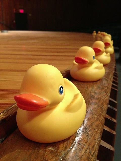 Seth Godin Ducks