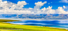 Sayram Lake (Panorama) (Feng Wei Photography) Tags: china trip travel summer panorama cloud mountain lake flower color tourism nature floral beautiful beauty horizontal season landscape flora scenery colorful asia paradise view outdoor vibr