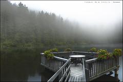 Mummelsee, una mirada (eredita) Tags: alemania selvanegra fernan eredita paisaje fondodeescritorio