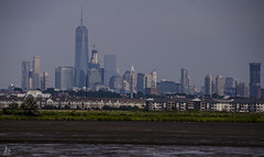Life in levels (Jersey JJ) Tags: nj nyc new jersey york swamps mud low tide brackish water manhattan skyline distant distance industrial lifeinlevels j2