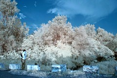 IMG_4108 (ysrl) Tags: taiwan tainan canon eos350d efs1855is ir infrared ir