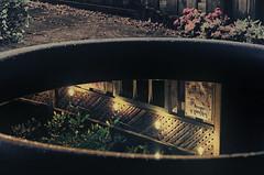 o o  ...up lnnq  (Paul B0udreau) Tags: raw canada ontario paulboudreauphotography niagara d5100 nikon nikond5100 photoshopcc nikkor70300mm pool reflection fence upsidedown flowers water lights
