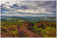 240/366 (jim-green777) Tags: ngc britain uk england 366project 2016 august heather walking hiking highpeak stanageedge bamfordedge nationalpark thepeakdistrict derbyshire landscape nikond610