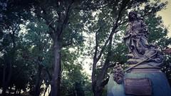 Fantasy garden (Quique CV) Tags: bratislava slovakia europe garden jardin statute estatua city ciudad europa ilce5100 sony fantasy fantasia leaf hojas tree arbol hss