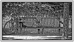 Le repos du cycliste (GilDays) Tags: france iledefrance versailles yvelines nikon nikond810 d810 bicyclette bicycle vlo cycle byke cycliste cyclist banc bench noiretblanc blackandwhite monochrome