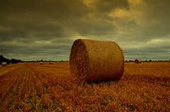 """ Straw Bales Tschechien "" (Kalbonsai) Tags: stroobalen straw bales tschechien czech clouds nikon d5100 1685mm naturphotography landscape view sunset"