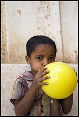 DSC_6616 (Sgaffo) Tags: yemen travelling 20072008 socotra