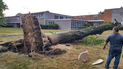 trees down at Lutheran High School East 07 - 2016-08-11 (Tim Evanson) Tags: clevelandheightsohio clevelandheightsmicroburst weather trees myhouse