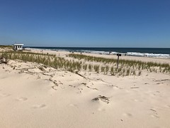 beach 2016 (Linda Moll Walker) Tags: iphone7plus beach islandbeach sandyhook nj