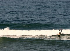 Surfista!! (puri_) Tags: portugal mar ondas prancha surfista gua espuma picmonkey