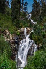 Steavenson Falls, Full View (Y.S.L.) Tags: canon5dmarkiii canonef70200mmf28lisiiusm steavensonfalls waterfall scene travel australia nationalpark