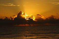 SUNRISE (R. D. SMITH) Tags: sunrise ocean nature sky clouds florida dawn sun atlanticocean water canoneos7d