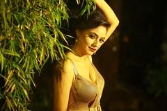 South actress MADHUCHANDAPhotos Set-4-HOT IN MODERN DRESS   (27)