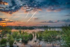 Swampland (Harry Sterken) Tags: griendtsveen hdr peel swamp moeras sunrise zonsopkomst