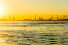 DSC_3171 (sergeysemendyaev) Tags: 2016 rio riodejaneiro brazil water bay sun sunset landscape scenery       dusk   paradadosmuseus