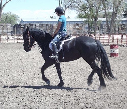Galad trot 2 yrs 9 mos
