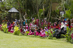 Audience at Bali Bird Park (marlin harms) Tags: balibirdpark tamanburungbalibirdpark