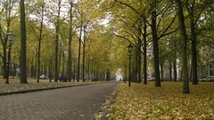 Lange Voorhout (interniek) Tags: interniek hagazine