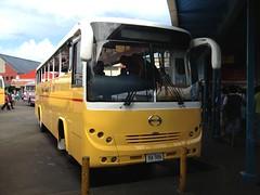 HA986 Hino CTCL (bhaskarroo) Tags: bus yellow fiji suva hino ctcl ha986