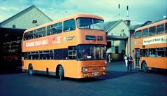 Strathclyde Leyland Atlantean Alexander LA1274 (miledorcha) Tags: bus buses glasgow transport greater alexander doubledecker strathclyde leyland psv pcv atlantean corpy an68 ggpte an68a1r altype la1274 fsu91t