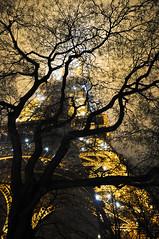 Misty Paris (freewalker208) Tags: light paris gold foggy effiel