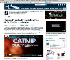 The Atlantic - Catnip: Egress to Oblivion?