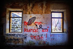 """don't give a sh#t about you!"" (Uros P.hotography) Tags: old trip color colour art abandoned tourism beautiful photoshop wonderful graffiti nice fantastic nikon perfect tour superb military awesome famous sigma tourist glorious slovenia journey stunning excellent slovenija lovely striking incredible 1020 unforgettable brilliant hdr breathtaking extraordinary aweinspiring remarkable monumental stupendous memorable barrack d300 exceptional photomatix acclaimed slod300"