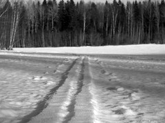 The impossible ski-track (Steffe) Tags: winter snow monochrome field sweden tungelsta haninge skitracks