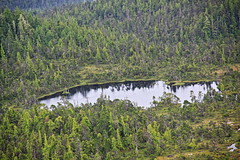 Trip to Alaska. Floatplane. Misty Fjords National Monument. Ketchikan (EBoechat) Tags: trip alaska floatplane misty fjords national monument ketchikan