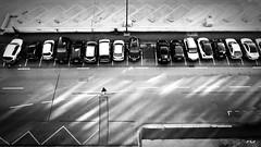 Cross the lines (Michel Waltrowski) Tags: clermontferrand gr homme lignes lumire marche nb noirblanc parking ricoh route voiture lines bw blackwhite candide street cars