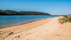 Ettalong Beach (Merrillie) Tags: sand nikon nature australia ettalongbeach d5500 nswcentralcoast newsouthwales sea nsw beach centralcoastnsw channel coastal photography ettalong outdoors waterscape waterfront centralcoast water bay