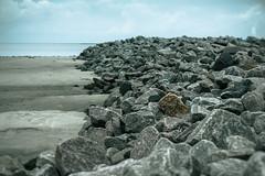 Rocks (Herr Olsen) Tags: rocks beach strand borkum buhne wellenbrecher