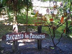 Lindos passarinhos no Recanto dos Pássaros no Fazzenda Park Hotel em Gaspar.