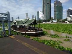 Water Hyacinths (geraldm1) Tags: thailand bangkok tropics tropical asia thai chaophrayariver