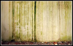 IMG_5911 (jozwa.maryn) Tags: komino bornesulinowo opuszczone abandoned miasto town duch ghost westfalenhof blokowisko