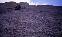 Grade V Slab, Lower Face (andywalker1) Tags: andrewwalker americandirect dru petitdru chamonix alps alpineclimbing
