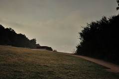 Path in the mist (smcnally24601) Tags: box hill morning summer mist surrey hills national trust england britain early