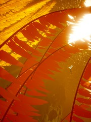 Fly Away (PulseZET) Tags: abzu giantsquid 505games ue4 unrealengine4 reshade reshadeframework