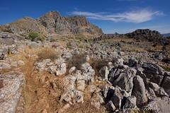 Montejaque (Nicholas Ferrary) Tags: nicholasferrary nature nikon nikond800e nikond810 d800e d810 landscape spain spanishwildlife wildlife stone rock sierra sierradegrazalema montejaque