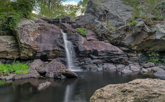 Morning Solitude (tquist24) Tags: chapmanfalls connecticut devilshopyardstatepark eightmileriver hdr nikon nikond5300 outdoor geotagged longexposure morning nature park reflection reflections river rock rocks summer tree trees water waterfall easthaddam unitedstates