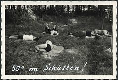 """Archiv H155  Fahrradtour: """"50° im Schatten"""", 1950er (Hans-Michael Tappen) Tags: archivhansmichaeltappen fahrradtour radtour schatten ruhepause schlaf ruhen tour frankreich france 1950er 1950s"""