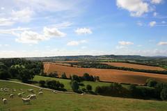 Burton Dassett Hills (38/52) (Stu.G) Tags: burtondassetthillscountrypark burtondassetthills countrypark burtondassett warwickshire canoneos400d canon eos 400d canonefs1855mmf3556 efs 1855mm f3556 england uk unitedkingdom united kingdom britain greatbritain project52 project 52 project522016 11sept16 11thseptember2016 11th september 2016 september2016 11thseptember 11916 110916 11092016 landscapeview landscape southwarwickshire