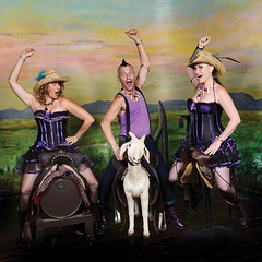 Hillbilly Goats (Woodford Folk Festival) Tags: folk music sound soul country sing guitar band