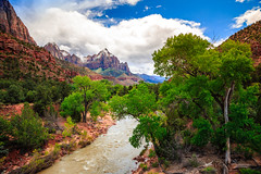 Beautiful Clouds on Zion (Bartfett) Tags: zion national park utah beautiful clouds day watchman cliffs canyon river virgin green trees forest blue sky walls sandstone