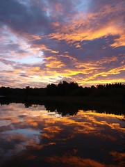 Avant la nuit **--- --° (Titole) Tags: coucherdesoleil sunset ilay lac lake reflection reflet clouds friendlychallenges thechallengefactory nicolefaton titole cloudy challengeyouwinner cyunanimous